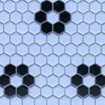 HP 1 Inch Hexagon Flower White Black