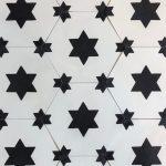 8 Inch Hexagon Star 13 Black White