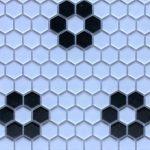 HP 1 Inch Hexagon Flower White Black